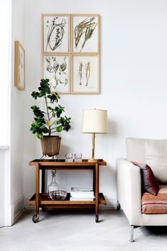 Small gallery wall and indoor plant in living room on side table with lamp