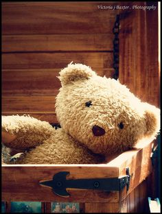 Toy chest with Teddy.