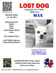 #HUNTSVILLE #TX #LOSTDOG 7-22-13 MALE SHORTHAIRED #CHIHUAHUA  https://www.facebook.com/findtexasdogs/posts/474395982656489:0