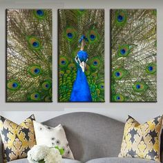 Peacock and Feathers – Media Room İdeas 2020 Peacock Canvas, Peacock Painting, Blue Canvas, Canvas Art, Canvas Prints, Painting Canvas, Cheap Artwork, Modern Artwork, Paint Set