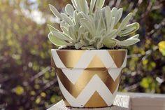 DIY gold spray painted chevron pot