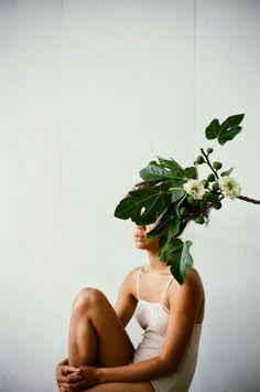 Razzle Dazzle Rose-Overgrowth