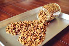 Skinny peanut butter cookie granola