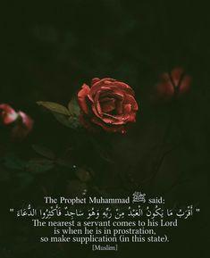 Islamic Prayer, Islamic Quotes, Alhamdulillah, Hadith, Prophet Muhammad Quotes, Religion Quotes, All About Islam, Quran Verses, Hindi Quotes