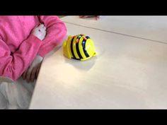 Bee-bot - YouTube