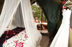 Eco-friendly, self-catering tree houses provide a secluded, romantic honeymoon destination or a haven for nature lovers. Honeymoon Deals, Romantic Honeymoon Destinations, Honeymoon Spots, Glam Camping, Luxury Camping, Glamping, Honeymoon Inspiration, Wedding Inspiration, Wedding Ideas