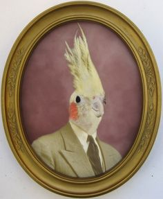 definitely need animals wearing suits in frames