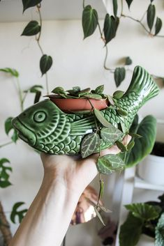 15 Indoor Garden Ideas for Wannabe Gardeners - Garten Potted Plants, Indoor Plants, Indoor Gardening, Decoration Plante, Diy Inspiration, Plants Are Friends, Plant Decor, Houseplants, Planting Flowers