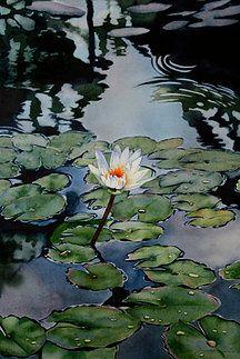 kathleenalexanderart | Koi Waterlily Paintings