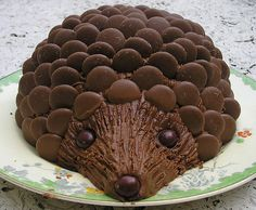 Hedgehog Cake - (You just use Cadbury's buttons/giant buttons) :)