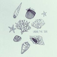 소라 Drawing Quotes, Drawing S, Art Drawings, Painting Inspiration, Tattoo Inspiration, Candle Logo, Calligraphy Drawing, Sea Art, Under The Sea