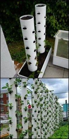 Organic Gardening Ideas How To Make Your Own Vertical Strawberry Planter Want to grow strawberries but don't have the space in your garden? Why not make this vertical planter? Have we got your green thumbs itching? Vertical Vegetable Gardens, Vertical Garden Wall, Vertical Planter, Veg Garden, Vegetable Gardening, Strawberry Tower, Strawberry Planters, Strawberry Garden, Bottle Garden