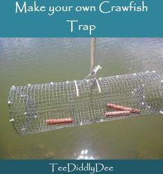 Make your own DIY crawfish trap!