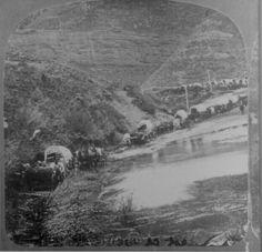 Battle of the Rosebud - Bing Images