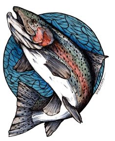 Tight Lined Tales of a Fly Fisherman: Fish Art. Salmon Tattoo, Trout Tattoo, Trout Fishing Tips, Fishing Lures, Fishing Boots, Fishing Stuff, Crappie Fishing, Salmon Fishing, Ice Fishing