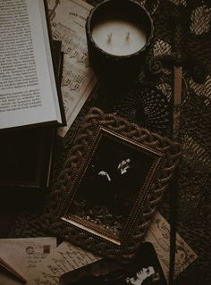 "ClassicLit&Headaches — ""The purest thrill comes not from the idea of. Gothic Aesthetic, Slytherin Aesthetic, Brown Aesthetic, Aesthetic Photo, Aesthetic Pictures, The Secret History, My New Room, Wall Collage, Retro"