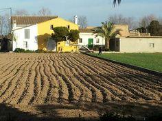 Horta Sud. j.g.mazorriaga