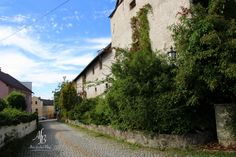 Ich war noch nie im Mühlviertel - bis jetzt! http://www.alnisfescherblog.com/ich-war-noch-nie-im-muehlviertel-bis-jetzt/