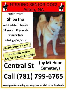 "Urgent Missing Senior in Acton MA – ""Isabel"" or ""Izzy"" is a female Shiba Inu, red with white markings, 14 years, 15 pounds, wearing a collar. Isabel suffers from seizures and REQUIRES MEDICATION! She is shy and may try to snap – Do Not Chase or Grab! Missing since 6/28/2014 from Central Street, just south-east of Mount Hope Cemetery. Please share Izzy's flier! Call (781) 799-6765 or (617) 872-3625 if seen — with Kimberly Fawn Panzarella. Like"