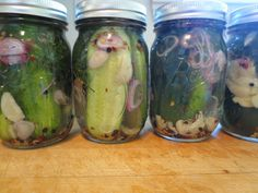 The Owl with the Goblet: Spicy Dill and Garlic Pickles