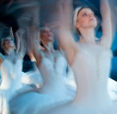 SwansVision Photograph : Andrea Paolini Merlo at the Swan Lake performance by the Hungarian National Ballet. Holy Body, Mikhail Baryshnikov, Grace Beauty, Lake Photos, Ballet Photos, Photography Competitions, Photo Competition, Ballet Photography, Swan Lake