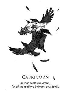 musterni-illustrates horoscopes on tumblr