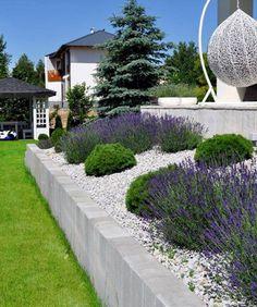 Best Indoor Garden Ideas for 2020 - Modern Back Gardens, Outdoor Gardens, Landscape Design, Garden Design, Small Yard Landscaping, Tiered Garden, Exterior, Terrace Garden, Garden Structures