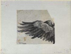 Dürer, Albrecht - Nemesis' wing