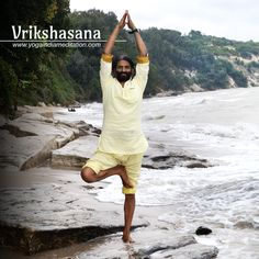 34 best tree pose  vrikshasana images  poses yoga yoga