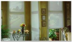 Order these light filtering sheer shades from Blinds Chalet! They offer a light filtering privacy fabric that can be adjusted to a sheer fabric for more view. Room, Window Treatments Sheer, Windows, House Styles, Home Decor, Sheer Window Shades, Window Coverings, Blinds, Shutters