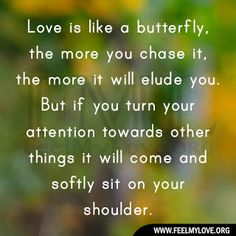 Love is like a butterfly, the more you chase it, the more it will elude you. But if you turn your attention towards other things it will come and softly sit on your shoulder. ~ Unknown