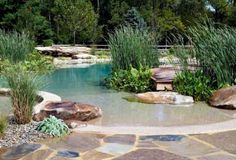 Garden & Landscape : Natural Swimming Ponds With Stone And Thatch Natural Swimming Ponds: Create Beautiful Natural Setting Gunite Swimming Pool Designs. Putting In A Swimming Pond.