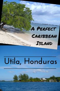 Living the dream in Utila, Honduras. One of the best places in Central America for diving, relaxing and partying. Do you know the 3 lies of Utila? Honduras Travel, Thailand Travel, Honduras Diving, Uganda Travel, Backpacking South America, Backpacking Europe, Roatan, Caribbean Sea, Caribbean Cruise