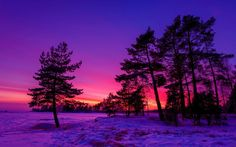 Beautiful colors in the winter sunset