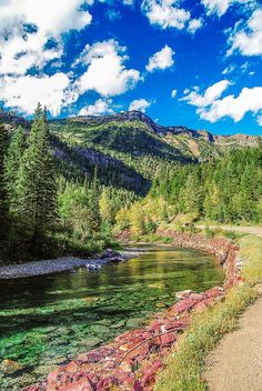 I would love to wander beside this creek. Anyone want to come with me? McDonald Creek - Montana