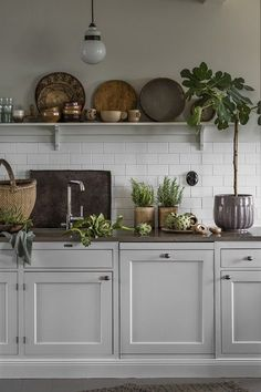 Why is Scandinavian kitchen design so popular? To begin with, homeowners are exempt .Why is Scandinavian kitchen design so popular? For starters, homeowners free their kitchens from excess material to maximize functionality. In traditional Scandinavian Open Plan Kitchen, New Kitchen, Kitchen Tools, Kitchen Ideas, Awesome Kitchen, Open Shelf Kitchen, Wooden Shelves Kitchen, Cute Kitchen, Kitchen Decor Themes
