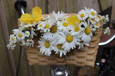 Poppytalk: DIY Flower Bicycle Baskets | Two Ways