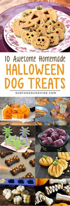 10 Awesome DIY Halloween Dog Treats You Can Make Yourself - The Best Healthy Dog Recipes Puppy Treats, Diy Dog Treats, Homemade Dog Treats, Healthy Dog Treats, Dog Halloween, Halloween Treats, Vintage Halloween, Halloween Inspo, Halloween Desserts