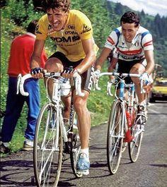 Delgado & Roche 1987
