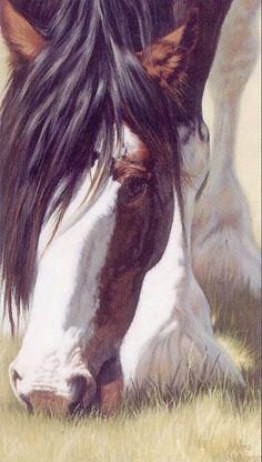 adeline halvorson prints | Gentle Giant Adeline Halvorson Horse art