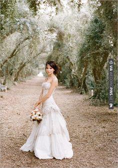Picotte Weddings | VIA #WEDDINGPINS.NET
