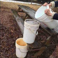 Comment extraire la potasse de la cendre