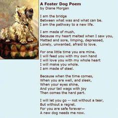 Hot Diggity Dog Poem