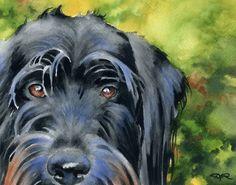 Black Labradoodle Watercolor Dog 8 x 10 Art Print Signed by Artist DJR   eBay