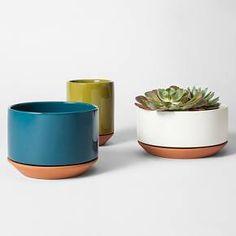 "Terracotta Planter 6"" Green - Modern by Dwell Magazine : Target"