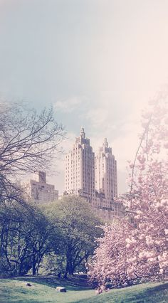 New York City ~ Manhattan | Central Park, with the twin-towered Art Deco Eldorado apartments in the background