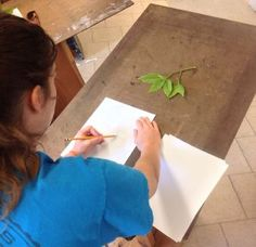 Students draw a plant six different ways in this drawing lesson.