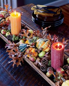 Autumn Harvest: Dough Riser