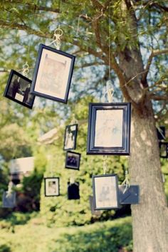 Now this is a family tree!  Hanging pictures of other family member on their wedding day or maybe who couldn't make it.  Thanks Alicia and Paul!