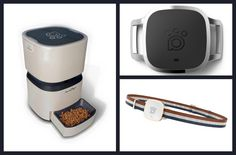 """Check out #PetGuides #ALNpet #ProductReview! """"Smart, Sleek And Savvy: The ALNpet Smart Feeder Takes Noms To New Tech Heights""""   http://www.petguide.com/products/dishware/dog/smart-sleek-and-savvy-the-alnpet-smart-feeder-takes-noms-to-new-tech-heights/"""